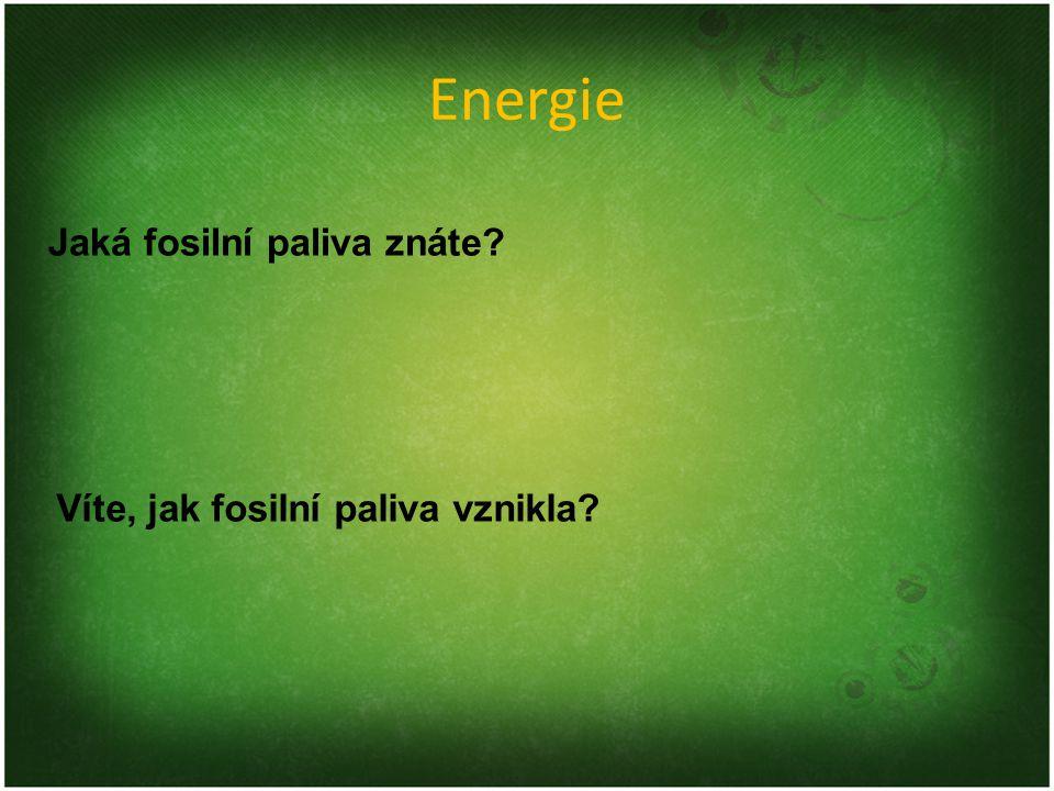 Energie Jaká fosilní paliva znáte? Víte, jak fosilní paliva vznikla?