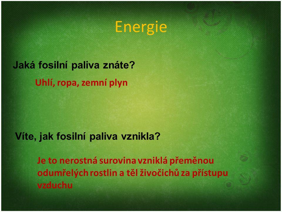 Energie Jaká fosilní paliva znáte.Víte, jak fosilní paliva vznikla.