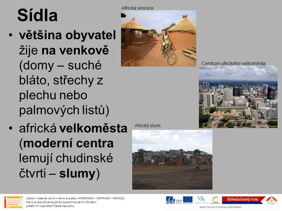 Sídla •většina obyvatel žije na venkově (domy – suché bláto, střechy z plechu nebo palmových listů) •africká velkoměsta (moderní centra lemují chudins