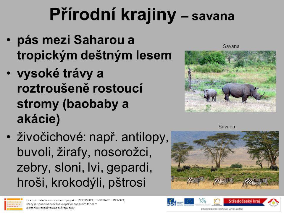 Přírodní krajiny – savana •pás mezi Saharou a tropickým deštným lesem •vysoké trávy a roztroušeně rostoucí stromy (baobaby a akácie) •živočichové: nap