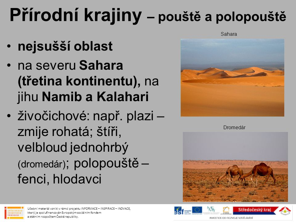 Přírodní krajiny – pouště a polopouště •nejsušší oblast •na severu Sahara (třetina kontinentu), na jihu Namib a Kalahari •živočichové: např. plazi – z