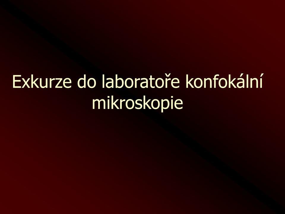 Exkurze do laboratoře konfokální mikroskopie