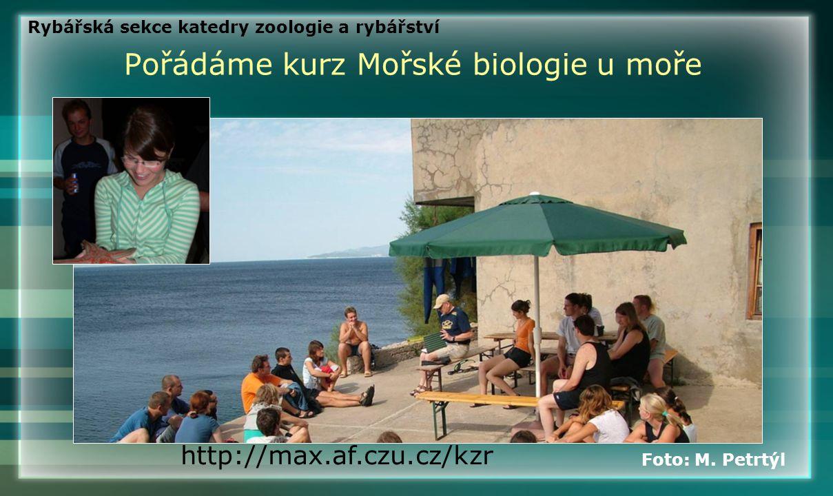 Pořádáme kurz Mořské biologie u moře http://max.af.czu.cz/kzr Foto: M. Petrtýl Rybářská sekce katedry zoologie a rybářství