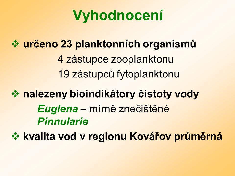 Vyhodnocení  určeno 23 planktonních organismů 4 zástupce zooplanktonu 19 zástupců fytoplanktonu  nalezeny bioindikátory čistoty vody Euglena – mírně znečištěné Pinnularie  kvalita vod v regionu Kovářov průměrná