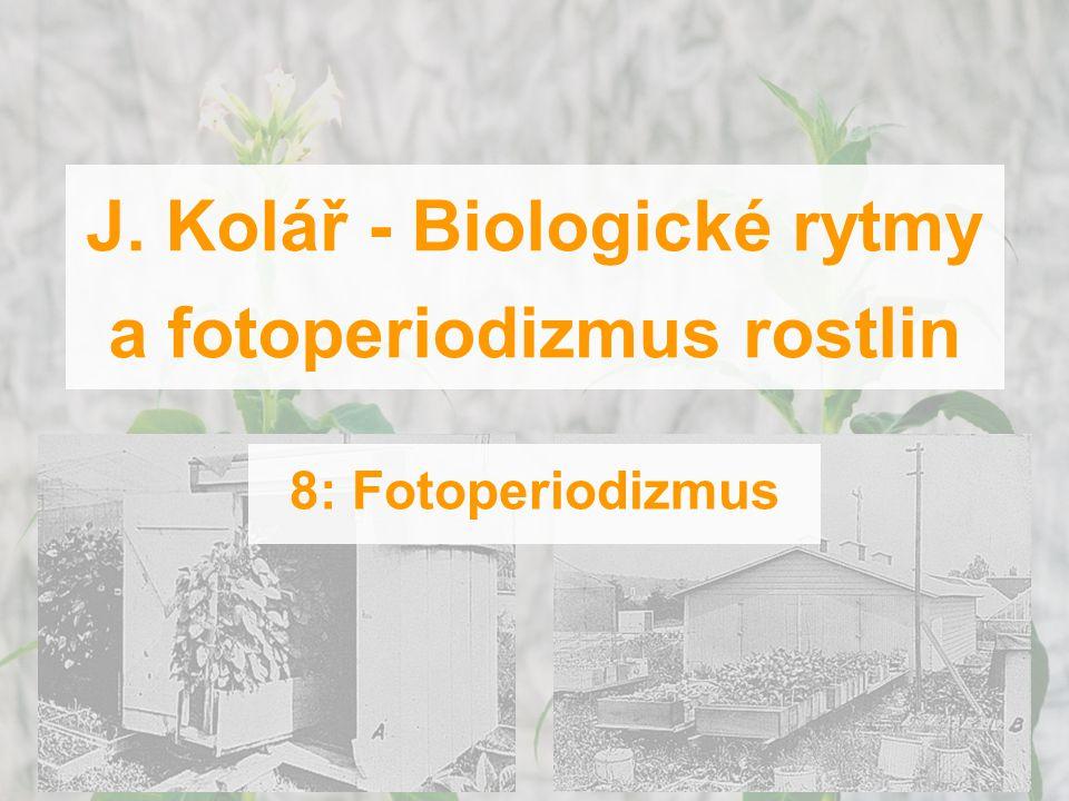 J. Kolář - Biologické rytmy a fotoperiodizmus rostlin 8: Fotoperiodizmus