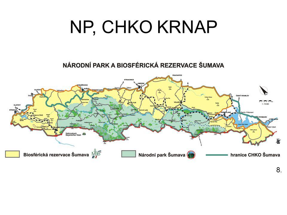 NP, CHKO KRNAP 8.