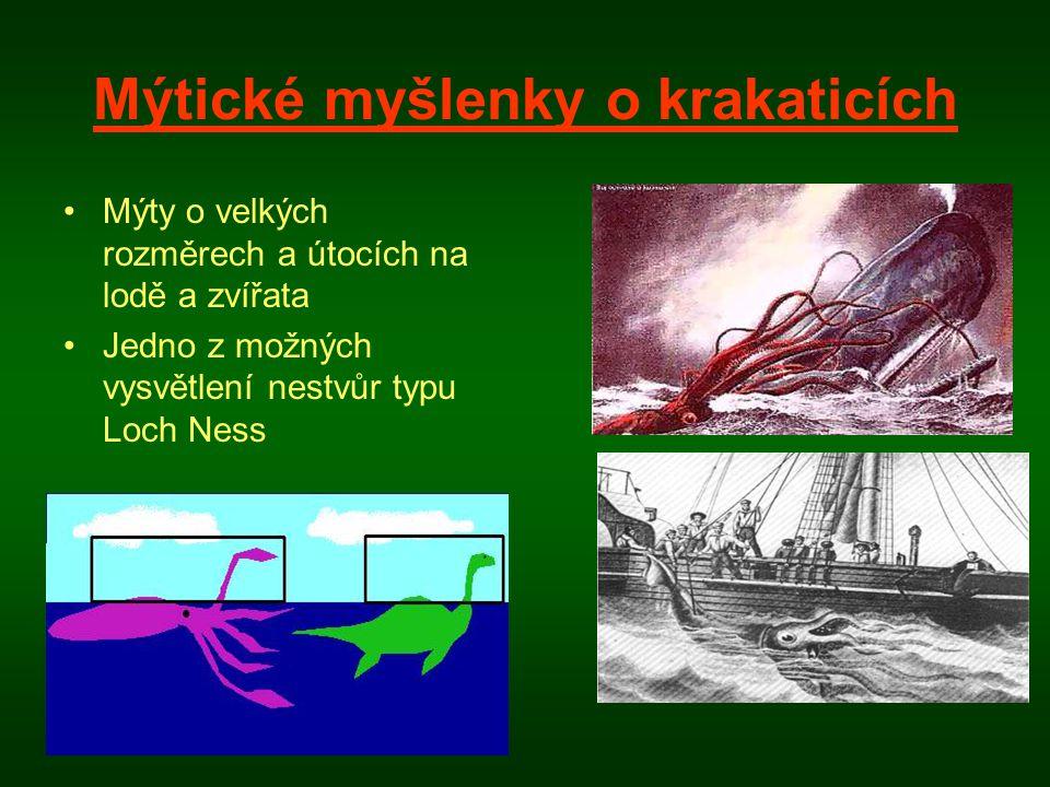 Mýtické myšlenky o krakaticích •Mýty o velkých rozměrech a útocích na lodě a zvířata •Jedno z možných vysvětlení nestvůr typu Loch Ness