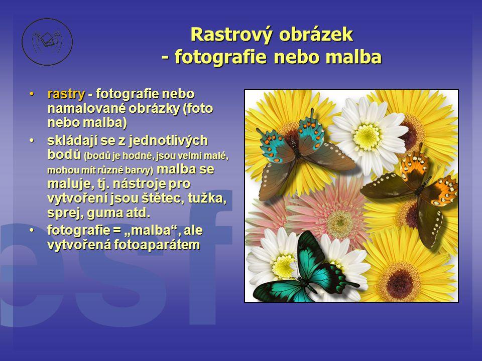Rastrový obrázek - fotografie nebo malba •rastry - fotografie nebo namalované obrázky (foto nebo malba) •skládají se z jednotlivých bodů (bodů je hodn