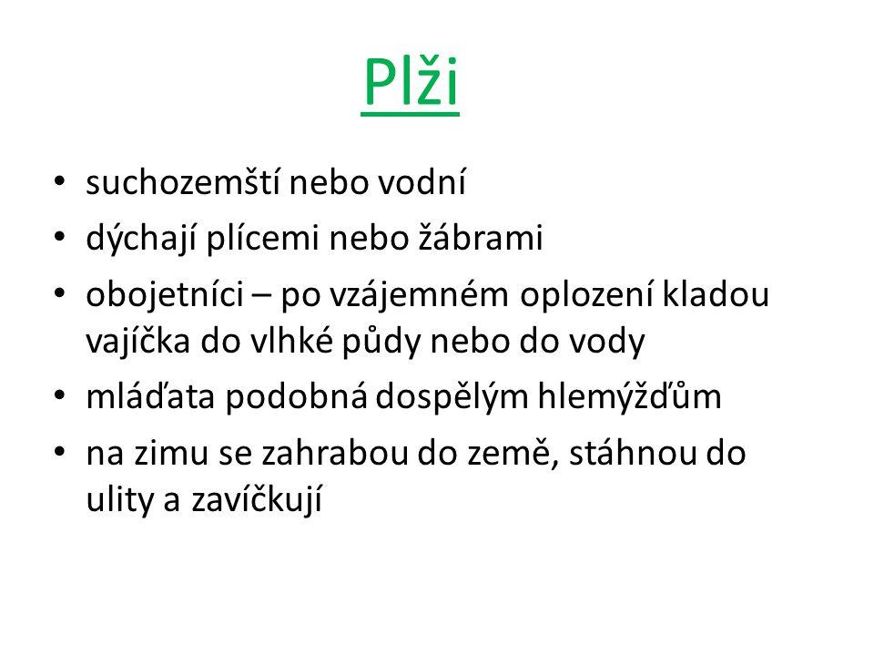 • http://cs.wikipedia.org/wiki/Soubor:Anodonta_cygnea1.jpg Jana Skýbová, Přírodopis, Zoologie.
