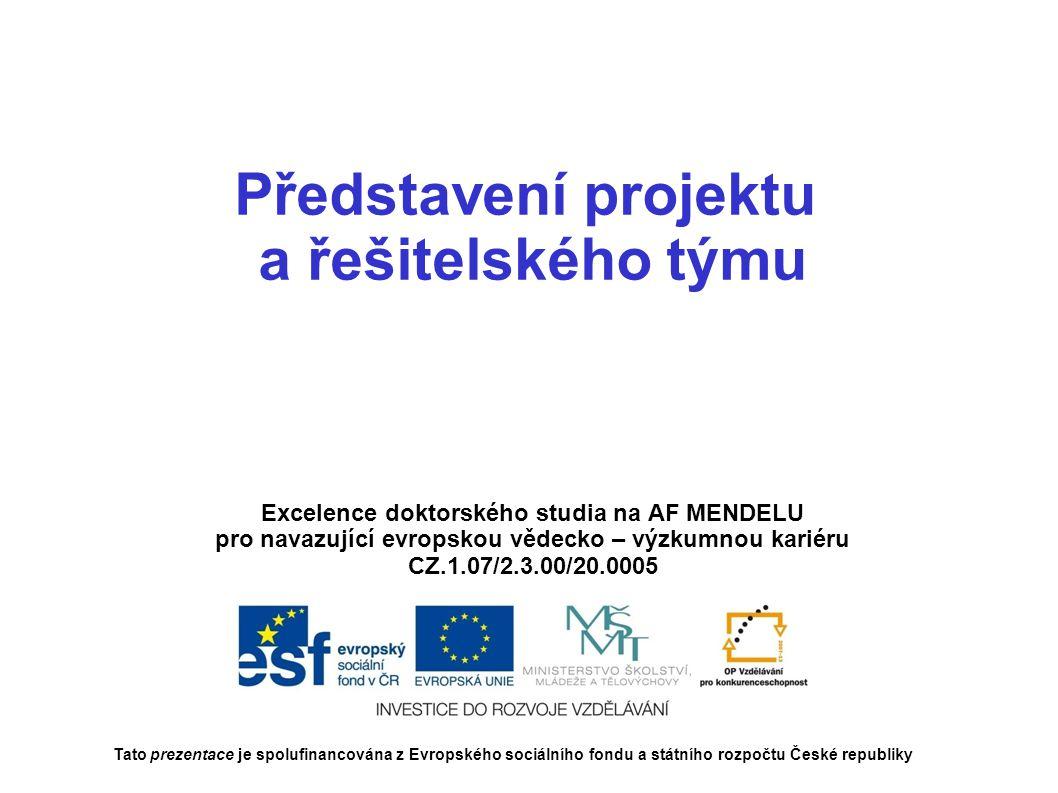 Představení projektu a řešitelského týmu Excelence doktorského studia na AF MENDELU pro navazující evropskou vědecko – výzkumnou kariéru CZ.1.07/2.3.00/20.0005 Tato prezentace je spolufinancována z Evropského sociálního fondu a státního rozpočtu České republiky