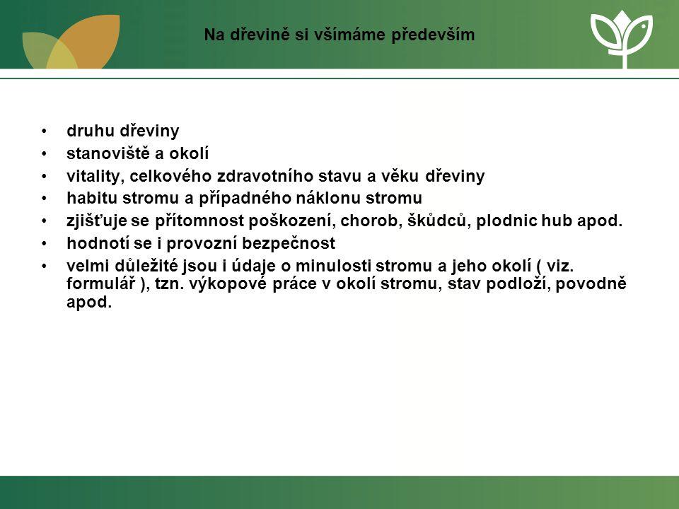 Na dřevině si všímáme především •druhu dřeviny •stanoviště a okolí •vitality, celkového zdravotního stavu a věku dřeviny •habitu stromu a případného n