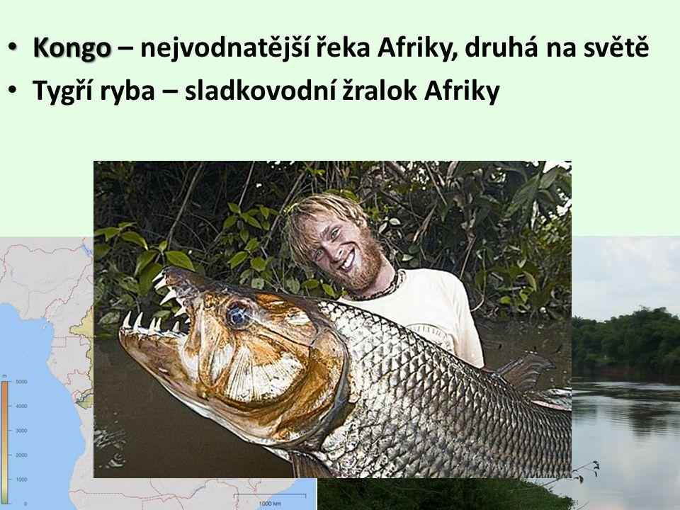 • http://cs.wikipedia.org/wiki/Soubor:Topography_of_africa.jpg http://cs.wikipedia.org/wiki/Soubor:Topography_of_africa.jpg • http://www.4zscheb.cz/elearning/zemepislearning/afrika4/obrazky/ricnisitafriky.jpg http://www.4zscheb.cz/elearning/zemepislearning/afrika4/obrazky/ricnisitafriky.jpg • http://www.afrikaonline.cz/view.php?cisloclanku=2002101601 http://www.afrikaonline.cz/view.php?cisloclanku=2002101601 • http://t0.gstatic.com/images?q=tbn:ANd9GcSP6u7BGFbf_Puak6Q6MJhzsQhZhQjWVDrwfRjYOSmgD0CflD1btA http://t0.gstatic.com/images?q=tbn:ANd9GcSP6u7BGFbf_Puak6Q6MJhzsQhZhQjWVDrwfRjYOSmgD0CflD1btA • http://cross-trip.com/media/foto/sudan/#wpcom-carousel-134 • http://cs.wikipedia.org/wiki/Nil http://cs.wikipedia.org/wiki/Nil • http://www.quido.cz/stavby/asuan.html http://www.quido.cz/stavby/asuan.html • http://www.eximtours.cz/fakultativni_vylety.jsp?id=68 http://www.eximtours.cz/fakultativni_vylety.jsp?id=68 • http://masch.blog.cz/0906/asuanska-prehrada-pycha-moderniho-egypta http://masch.blog.cz/0906/asuanska-prehrada-pycha-moderniho-egypta • http://cs.wikipedia.org/wiki/Kongo_(%C5%99eka) http://cs.wikipedia.org/wiki/Kongo_(%C5%99eka) • http://michaelchuck.blog.cz/1201/jakub-vagner http://michaelchuck.blog.cz/1201/jakub-vagner • http://cs.wikipedia.org/wiki/Soubor:Victoria_Falls_Zambezi.jpg http://cs.wikipedia.org/wiki/Soubor:Victoria_Falls_Zambezi.jpg • http://i.idnes.cz/10/031/gal/JB318f19_holub_mapa2.jpg http://i.idnes.cz/10/031/gal/JB318f19_holub_mapa2.jpg • http://cs.wikipedia.org/wiki/Soubor:Kariba_dam.jpg http://cs.wikipedia.org/wiki/Soubor:Kariba_dam.jpg • http://t3.gstatic.com/images?q=tbn:ANd9GcTRe_hXa482N51DFrJCrDTBBy2TOKCZag5W817mHQodzvbV6crV http://t3.gstatic.com/images?q=tbn:ANd9GcTRe_hXa482N51DFrJCrDTBBy2TOKCZag5W817mHQodzvbV6crV • http://www.quido.cz/stavby/suez.html http://www.quido.cz/stavby/suez.html • http://egypt.yin.cz/h/hospodarstvi/ http://egypt.yin.cz/h/hospodarstvi/ • http://www.kolemsveta2008.estranky.cz/img/mid/35/04-suezsky-pruplav.jpg htt