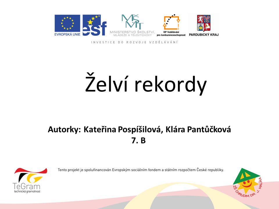 Želví rekordy Autorky: Kateřina Pospíšilová, Klára Pantůčková 7. B