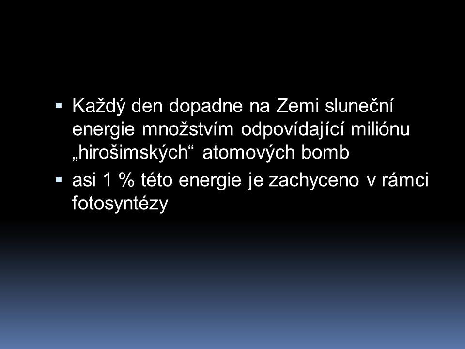 """ Každý den dopadne na Zemi sluneční energie množstvím odpovídající miliónu """"hirošimských atomových bomb  asi 1 % této energie je zachyceno v rámci fotosyntézy"""