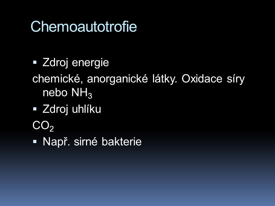 Chemoautotrofie  Zdroj energie chemické, anorganické látky.
