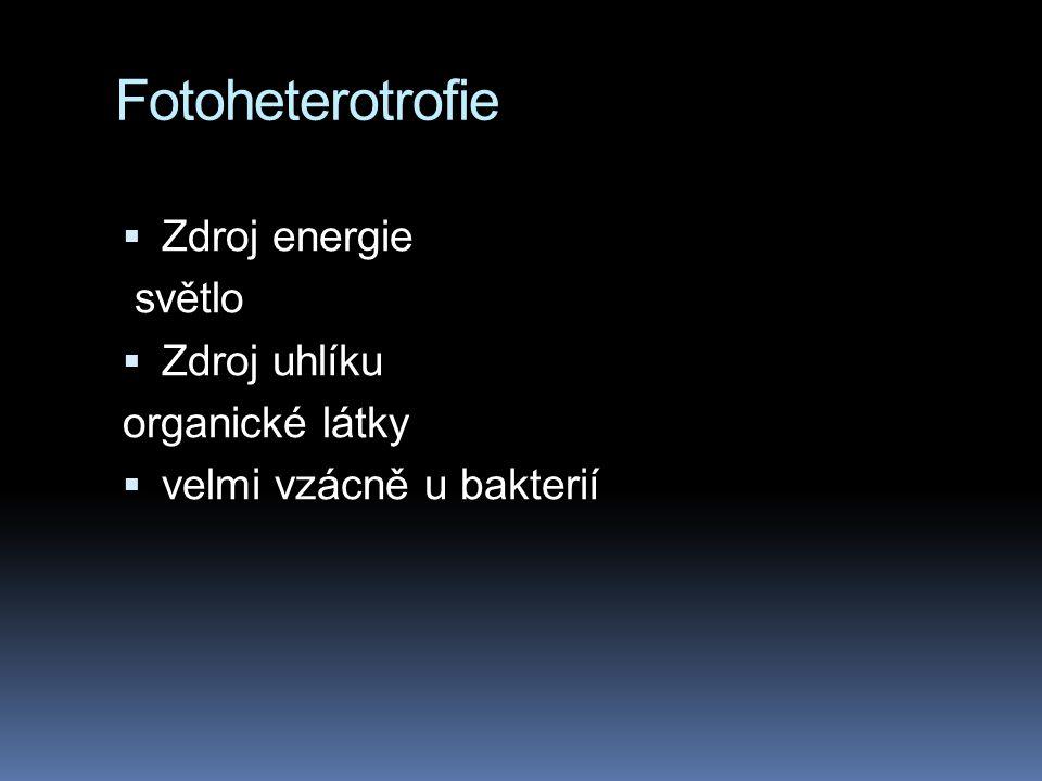 Fotoheterotrofie  Zdroj energie světlo  Zdroj uhlíku organické látky  velmi vzácně u bakterií