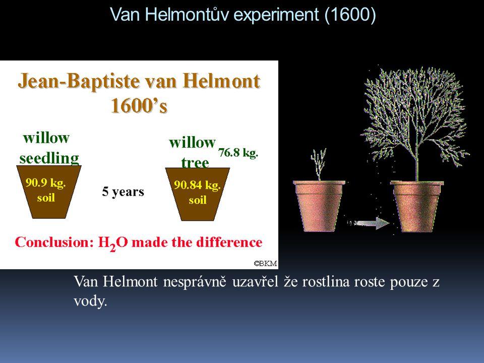Van Helmontův experiment (1600) Van Helmont nesprávně uzavřel že rostlina roste pouze z vody.