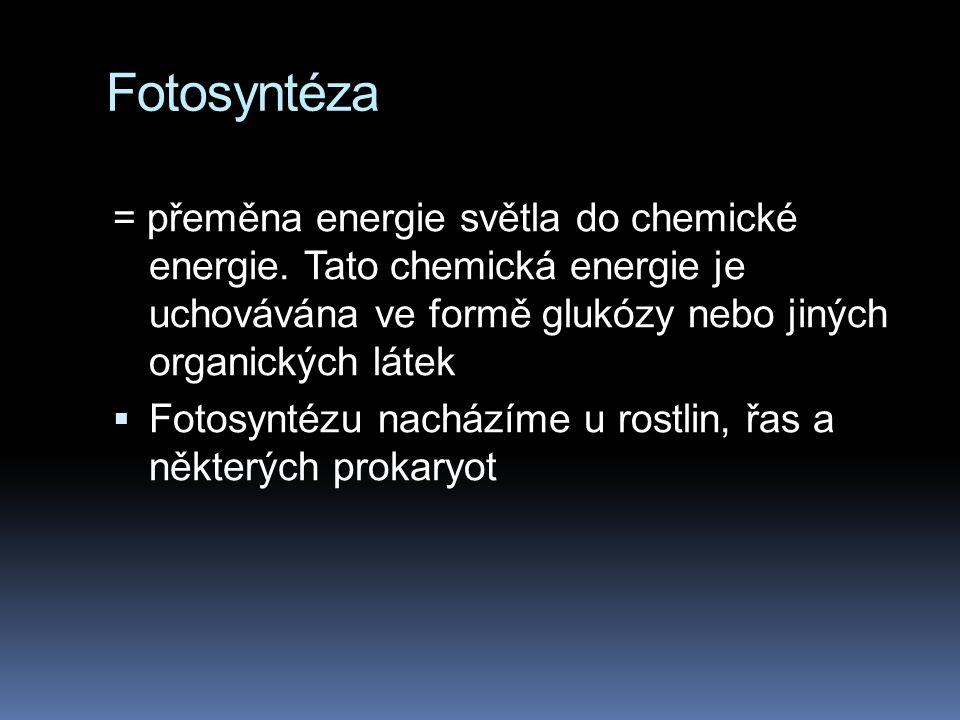 Fotosyntéza = přeměna energie světla do chemické energie.