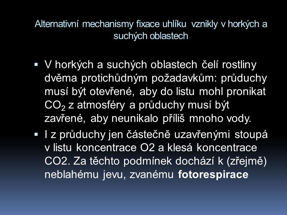 Alternativní mechanismy fixace uhlíku vznikly v horkých a suchých oblastech  V horkých a suchých oblastech čelí rostliny dvěma protichůdným požadavkům: průduchy musí být otevřené, aby do listu mohl pronikat CO 2 z atmosféry a průduchy musí být zavřené, aby neunikalo příliš mnoho vody.