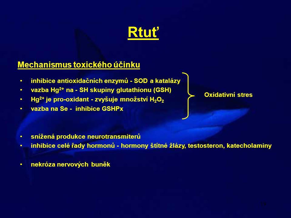19 Rtuť Mechanismus toxického účinku •inhibice antioxidačních enzymů - SOD a katalázy •vazba Hg 2+ na - SH skupiny glutathionu (GSH) •Hg 2+ je pro-oxi