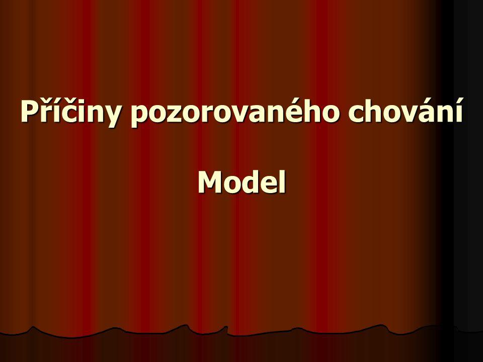 Příčiny pozorovaného chování Model