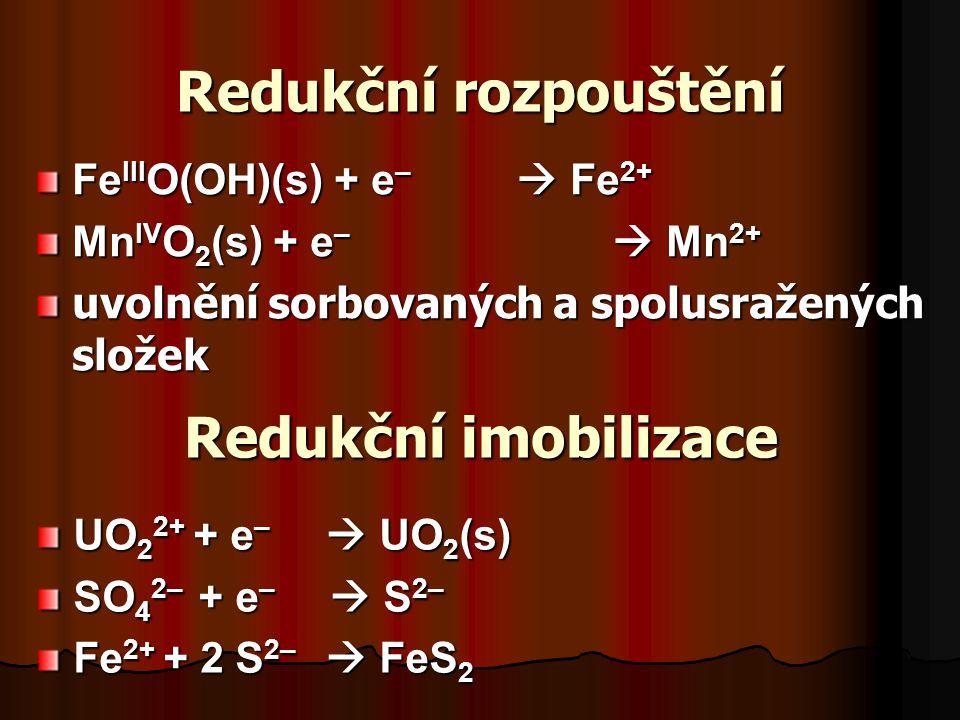 Redukční rozpouštění Fe III O(OH)(s) + e –  Fe 2+ Mn IV O 2 (s) + e –  Mn 2+ uvolnění sorbovaných a spolusražených složek Redukční imobilizace UO 2 2+ + e –  UO 2 (s) SO 4 2– + e –  S 2– Fe 2+ + 2 S 2–  FeS 2