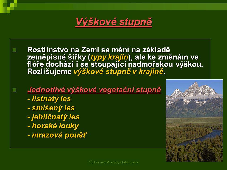 Zdroje obrázků: - http://foto-krkonose.wgz.cz/image/8063347http://foto-krkonose.wgz.cz/image/8063347 - http://etext.czu.cz/img/skripta/68/habrovadoubravalednice-1.jpghttp://etext.czu.cz/img/skripta/68/habrovadoubravalednice-1.jpg - http://etext.czu.cz/img/skripta/68/img215-1.jpghttp://etext.czu.cz/img/skripta/68/img215-1.jpg - http://etext.czu.cz/img/skripta/68/klimax_smrciny_sumava-1.jpghttp://etext.czu.cz/img/skripta/68/klimax_smrciny_sumava-1.jpg - http://etext.czu.cz/img/skripta/68/img061-1.jpghttp://etext.czu.cz/img/skripta/68/img061-1.jpg - http://etext.czu.cz/img/skripta/68/img216-1.jpghttp://etext.czu.cz/img/skripta/68/img216-1.jpg - http://etext.czu.cz/img/skripta/68/img027-1.jpghttp://etext.czu.cz/img/skripta/68/img027-1.jpg - http://cs.wikipedia.org/wiki/Soubor:Grand_Tetons11.jpghttp://cs.wikipedia.org/wiki/Soubor:Grand_Tetons11.jpg ZŠ, Týn nad Vltavou, Malá Strana