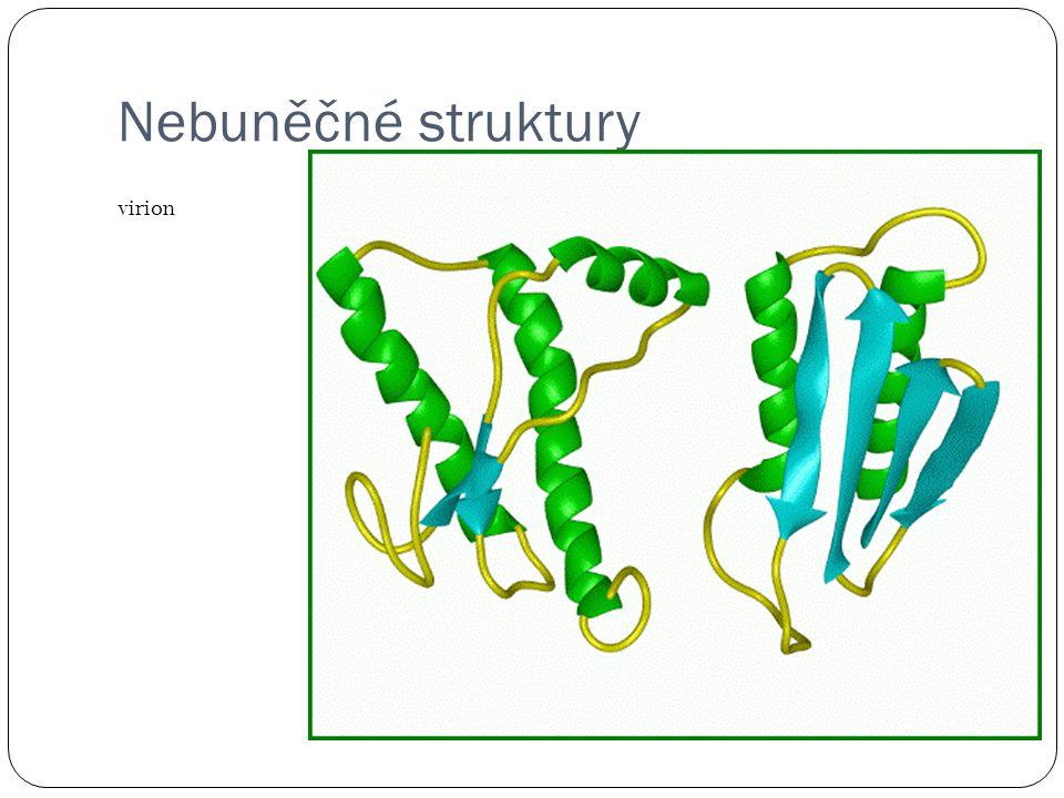 virus Bakteriofág = virus napadající bakterie
