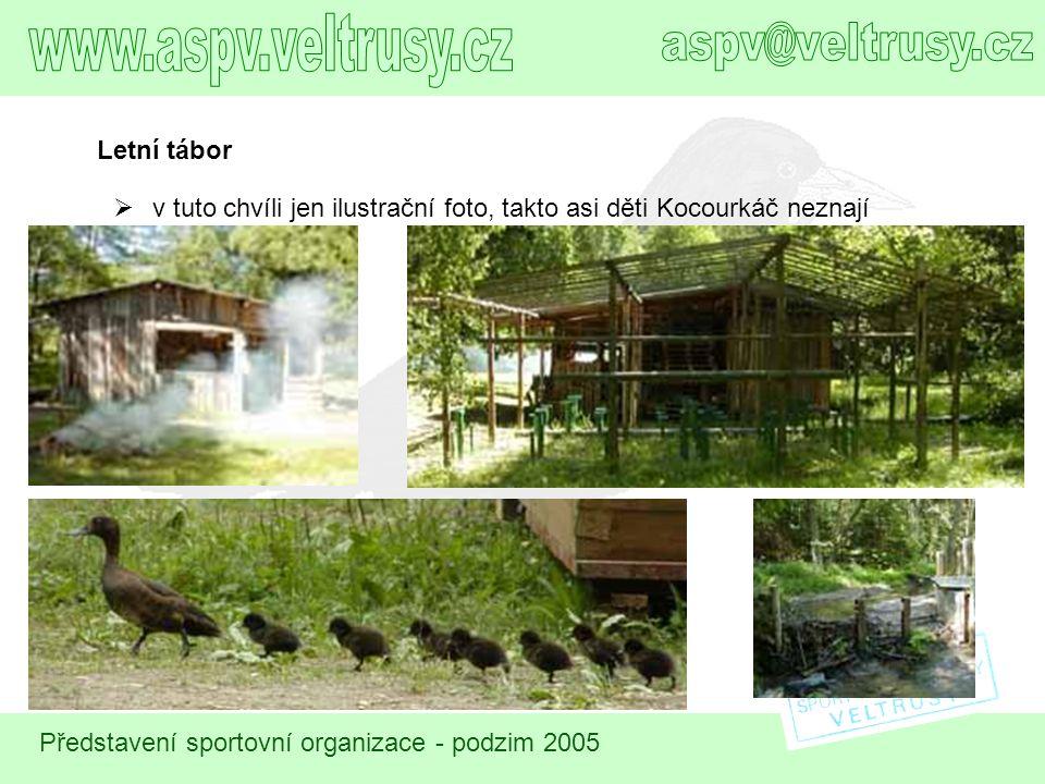 Představení sportovní organizace - podzim 2005 Letní tábor  v tuto chvíli jen ilustrační foto, takto asi děti Kocourkáč neznají