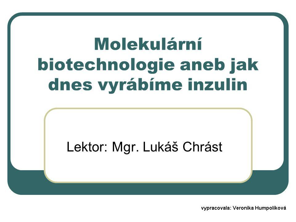 Molekulární biotechnologie aneb jak dnes vyrábíme inzulin Lektor: Mgr. Lukáš Chrást