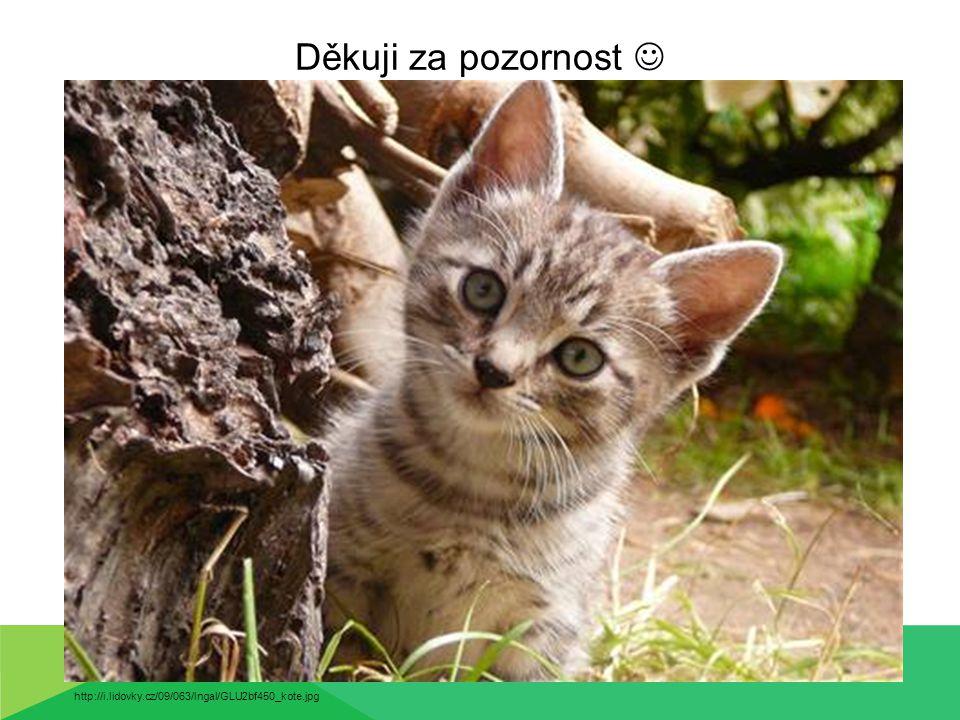 Děkuji za pozornost  http://i.lidovky.cz/09/063/lngal/GLU2bf450_kote.jpg