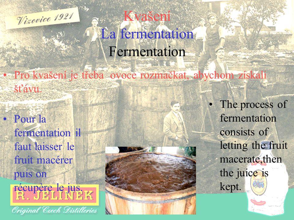 Kvašení La fermentation Fermentation Pour la fermentation il faut laisser le fruit macérer puis on récupère le jus. The process of fermentation consis