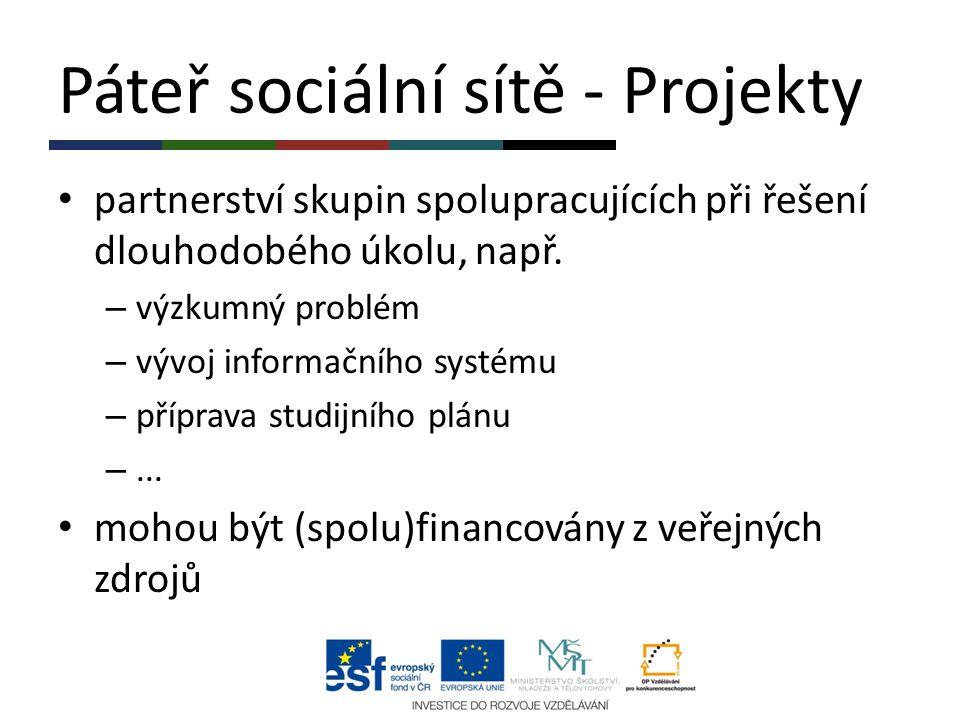 Páteř sociální sítě - Projekty partnerství skupin spolupracujících při řešení dlouhodobého úkolu, např. – výzkumný problém – vývoj informačního systém
