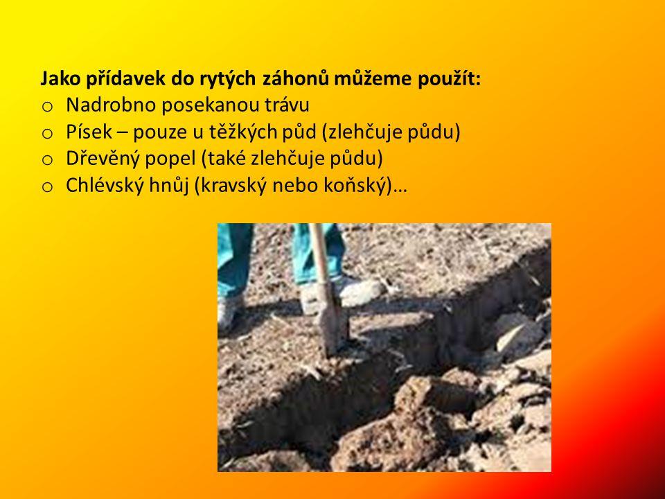 Jako přídavek do rytých záhonů můžeme použít: o Nadrobno posekanou trávu o Písek – pouze u těžkých půd (zlehčuje půdu) o Dřevěný popel (také zlehčuje půdu) o Chlévský hnůj (kravský nebo koňský)…