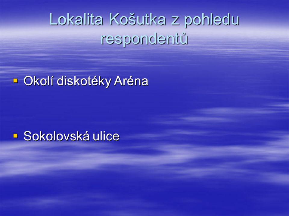  Okolí diskotéky Aréna  Sokolovská ulice Lokalita Košutka z pohledu respondentů