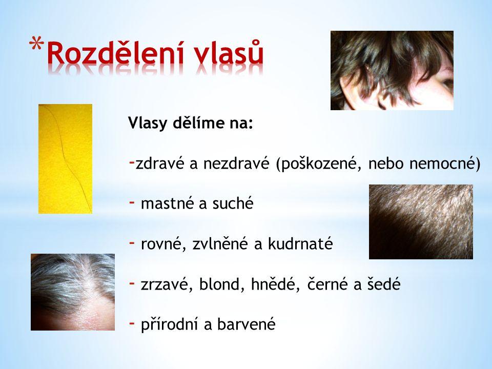 Vlasy myjeme šamponem, nikdy nepoužíváme mýdlo.Je důležité vybrat správný šampon podle typu vlasů.