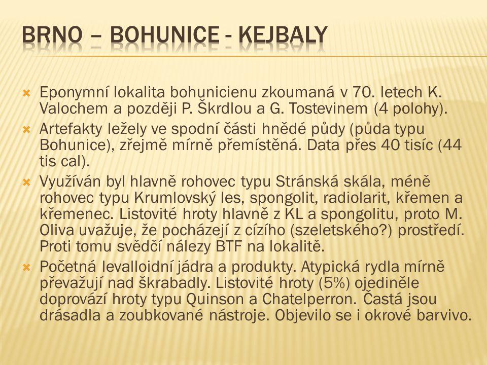  Eponymní lokalita bohunicienu zkoumaná v 70.letech K.