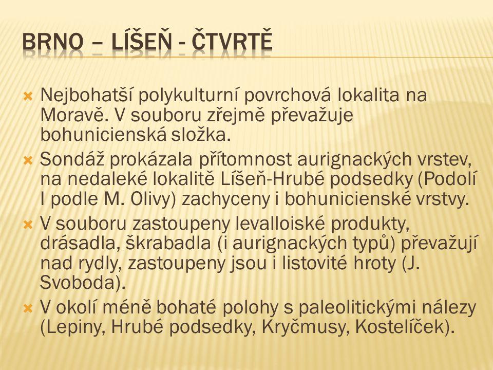  Nejbohatší polykulturní povrchová lokalita na Moravě.