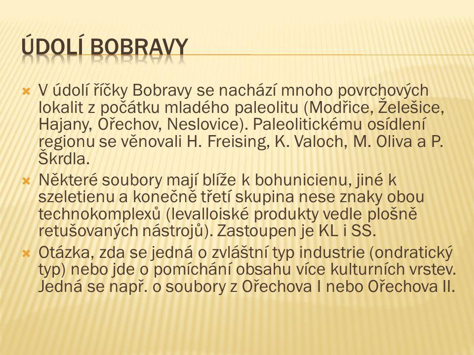  V údolí říčky Bobravy se nachází mnoho povrchových lokalit z počátku mladého paleolitu (Modřice, Želešice, Hajany, Ořechov, Neslovice).