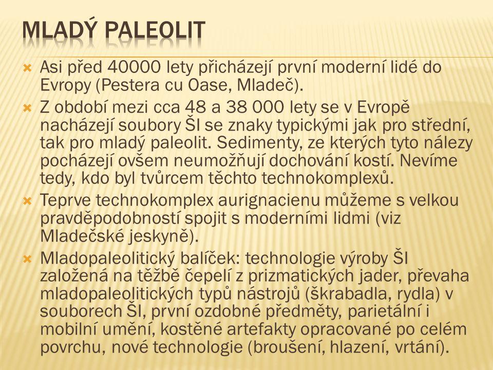  Podle dřívějších představ mělo být szeletské osídlení západního Slovenska poměrně bohaté včetně stratifikovaných lokalit.