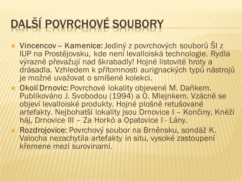  Vincencov – Kamenice: Jediný z povrchových souborů ŠI z IUP na Prostějovsku, kde není levalloiská technologie.