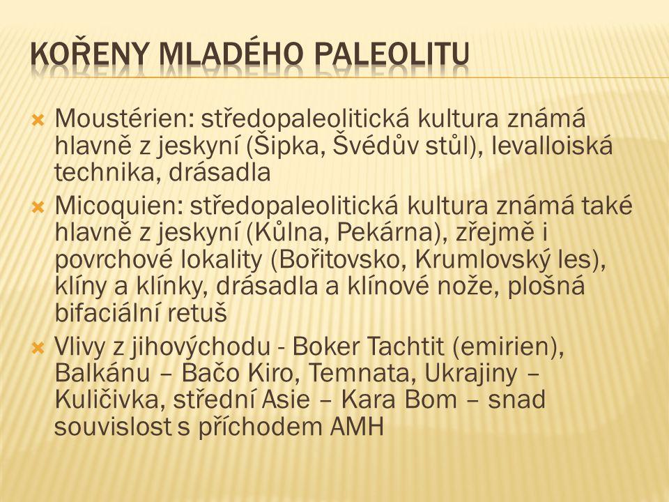  Moustérien: středopaleolitická kultura známá hlavně z jeskyní (Šipka, Švédův stůl), levalloiská technika, drásadla  Micoquien: středopaleolitická kultura známá také hlavně z jeskyní (Kůlna, Pekárna), zřejmě i povrchové lokality (Bořitovsko, Krumlovský les), klíny a klínky, drásadla a klínové nože, plošná bifaciální retuš  Vlivy z jihovýchodu - Boker Tachtit (emirien), Balkánu – Bačo Kiro, Temnata, Ukrajiny – Kuličivka, střední Asie – Kara Bom – snad souvislost s příchodem AMH