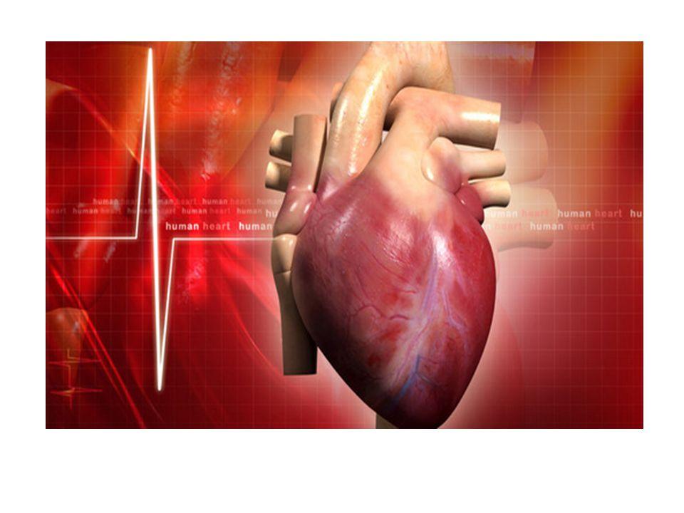 Kardiovaskulární choroby  nemocnost a úmrtnost na srdeční a cévní (kardiovaskulární) choroby je v naší republice dosud na jednom z předních míst mezi evropskými zeměmi  tato onemocnění jsou příčinou více než poloviny všech úmrtí a zhruba jedné třetiny všech trvalých invalidit  jsou velkým problémem zdravotnickým, ekonomickým, celospolečenským, přitom míra utrpení postižených se ani postihnout nedá