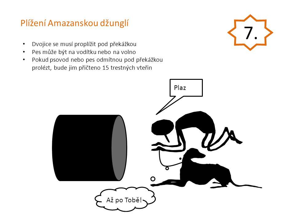 Dvojice se musí proplížit pod překážkou Pes může být na vodítku nebo na volno Pokud psovod nebo pes odmítnou pod překážkou prolézt, bude jim přičteno