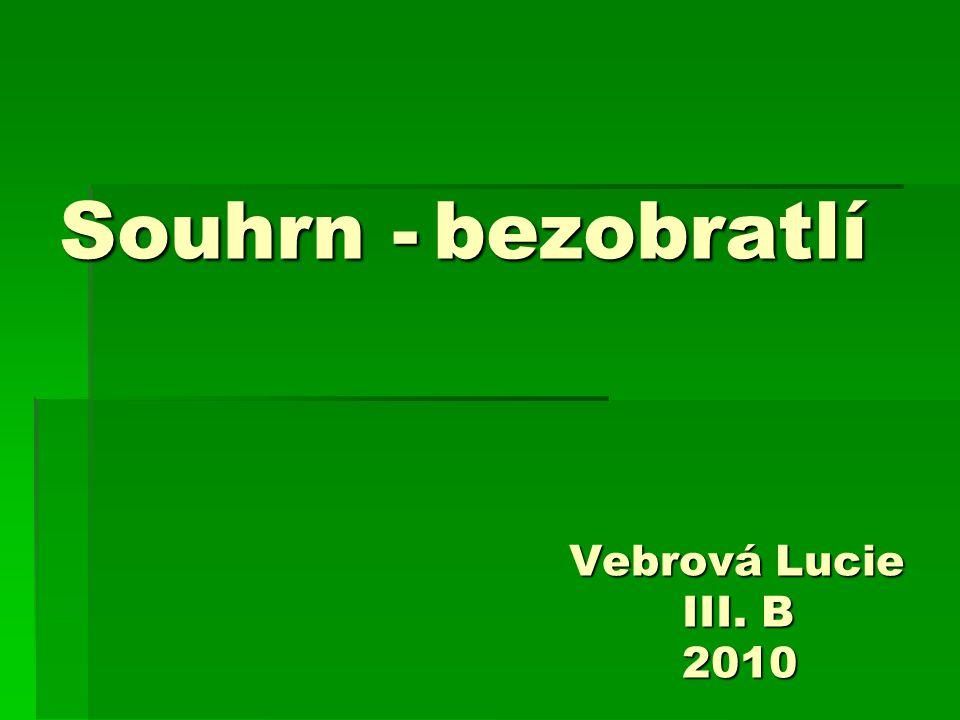 SOUHRN - BEZOBRATLÍ I.