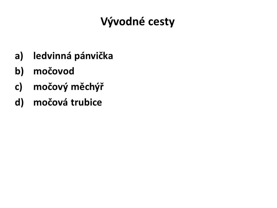 Vývodné cesty a)ledvinná pánvička b)močovod c)močový měchýř d)močová trubice