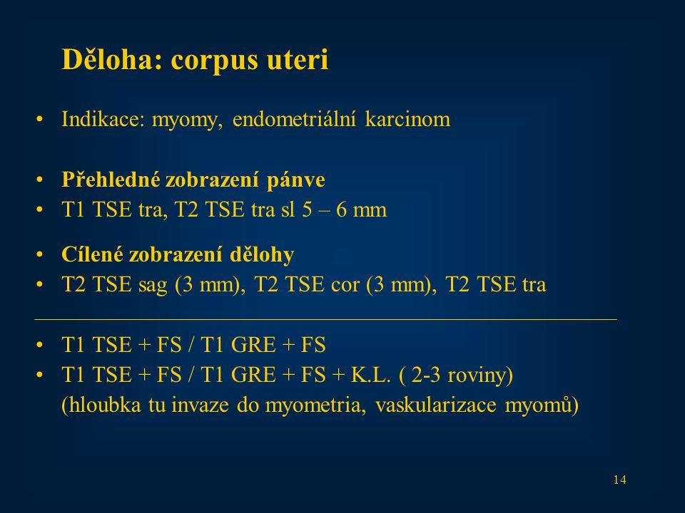 14 Děloha: corpus uteri Indikace: myomy, endometriální karcinom Přehledné zobrazení pánve T1 TSE tra, T2 TSE tra sl 5 – 6 mm Cílené zobrazení dělohy T2 TSE sag (3 mm), T2 TSE cor (3 mm), T2 TSE tra T1 TSE + FS / T1 GRE + FS T1 TSE + FS / T1 GRE + FS + K.L.