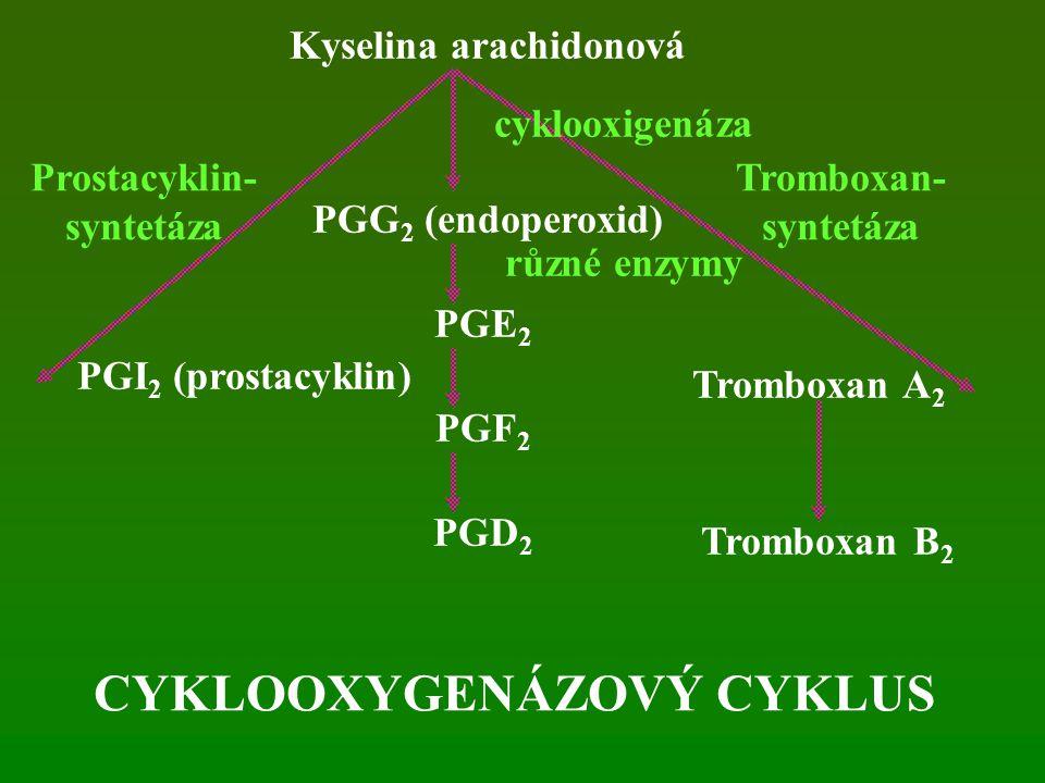 Kyselina arachidonová PGG 2 (endoperoxid) PGE 2 PGF 2 PGD 2 PGI 2 (prostacyklin) Tromboxan A 2 Tromboxan B 2 cyklooxigenáza různé enzymy Prostacyklin- syntetáza Tromboxan- syntetáza CYKLOOXYGENÁZOVÝ CYKLUS