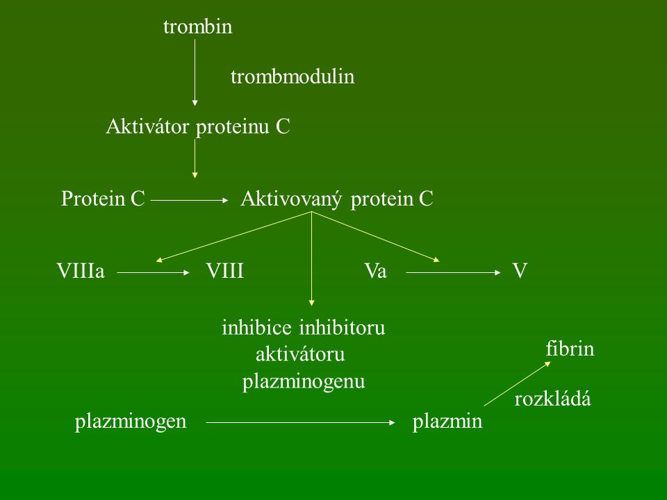 trombin Aktivátor proteinu C trombmodulin Protein CAktivovaný protein C VIIIaVIIIVaV inhibice inhibitoru aktivátoru plazminogenu plazminogenplazmin fi