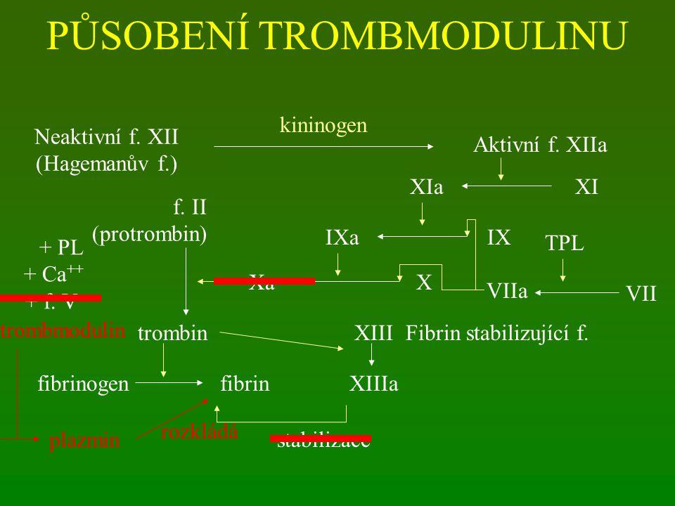 PŮSOBENÍ TROMBMODULINU Neaktivní f.XII (Hagemanův f.) Aktivní f.
